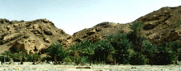 Nuweiba